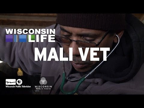 Wisconsin Life - Mali Vet