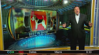"""Bruce talks the dog show, Don calls out his dog, """"Mr. Stupid,"""" on TV"""