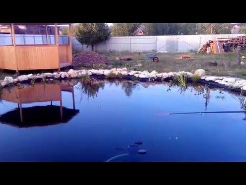 как сделать свой пруд для ловли рыбы