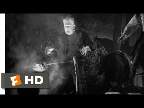 Bride of Frankenstein movie clips: http://j.mp/1CMO9a7 BUY THE MOVIE: http://amzn.to/vf2H4F Don't miss the HOTTEST NEW TRAILERS: http://bit.ly/1u2y6pr CLIP DESCRIPTION: When The Monster (Boris...