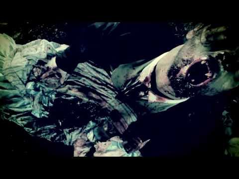 Black Dahlia Murder - Moonlight Equilibrium