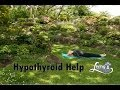 Yoga for Hypothyroid: Poses to help with your Hypothyroid