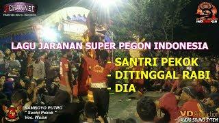 download lagu Samboyo Putro Lagu Jaranan Santri Pekok, Ditinggal Rabi, Dia gratis