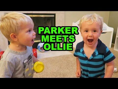 Parker Meets Ollie: Fun w/ Daily Bumps