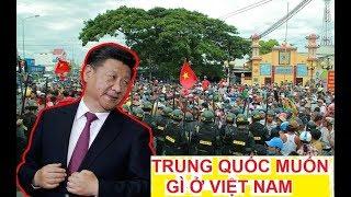 Sự thật Trung Quốc muốn gì ở Việt Nam || Tình hình chính trị VN hiện nay