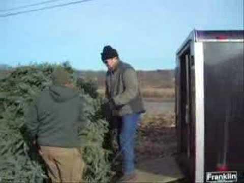 Hughes Family Christmas Tree