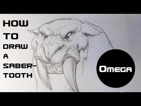 Monster Tiger Drawing How to Draw a Sabertooth Tiger