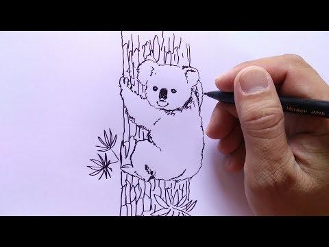 cara menggambar koala