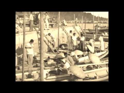 Brunei Documentary