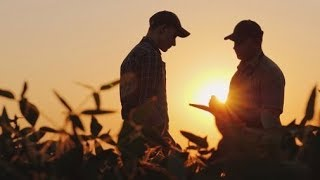 US-China trade war continues to take its toll on farmers
