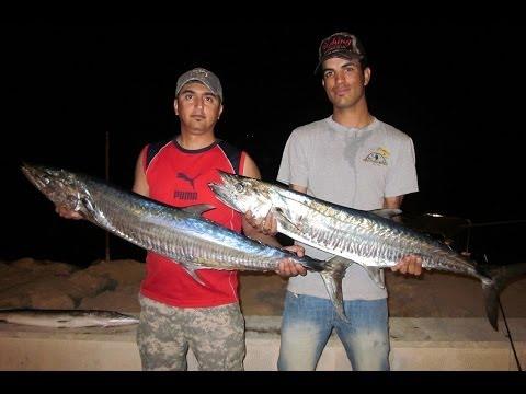 professional trolling fishing for persian gulf / kish island / iran / ebi fisher