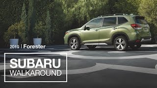 The All-New 2019 Subaru Forester SUV | New Model Walkaround