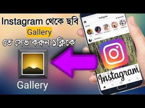 Instagram Downloader - Download
