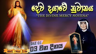 Divine Mercy   - Day 03