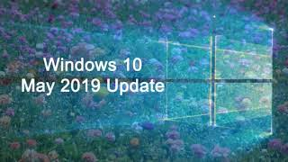 Why is Windows 10 May 2019 update not showing up through Windows update