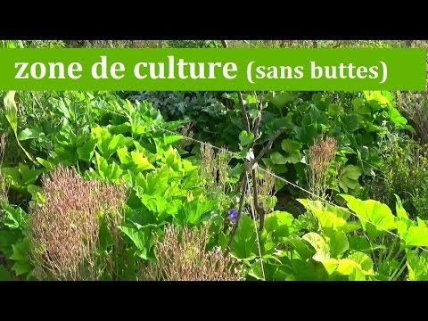 Pr paration d 39 une zone de culture sans buttes permaculture agro cologie etc for Culture sur butte permaculture
