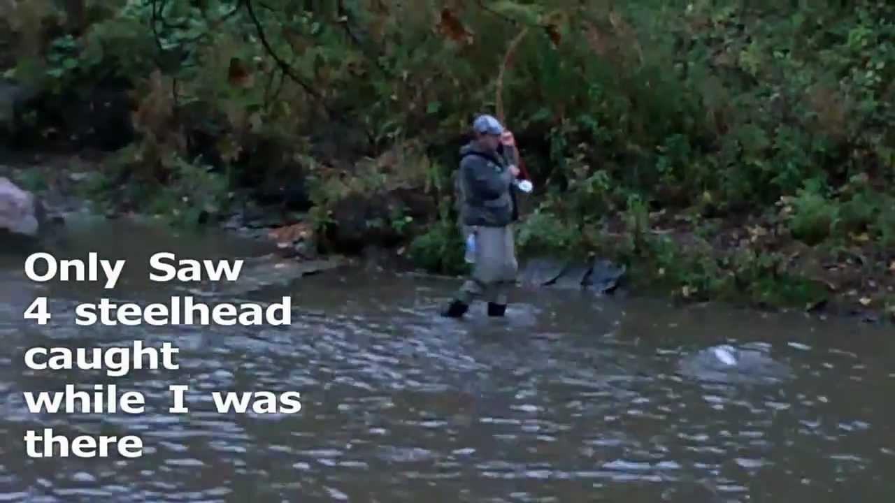 Steelhead fishing erie pa walnut creek 10 14 2011 youtube for Erie pa steelhead fishing report