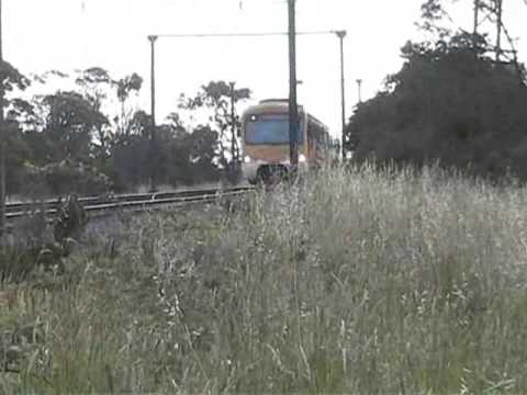 Connex (Siemens) train approaching Pakenham