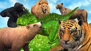 Learn Dinosarus Finger Family Song || Tiger Bear Gorilla Animals Cartoon Kids Rhymes For Babies