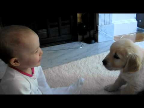 Baby and Puppy meet for the first time!