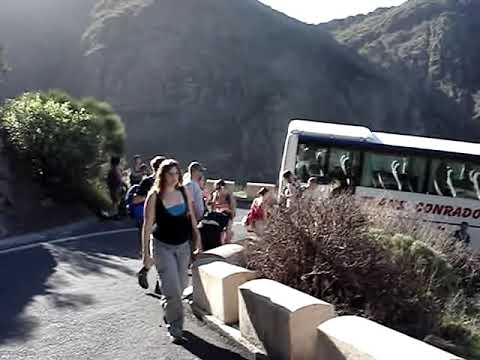 Idiot Spanish busdriver almost kills students