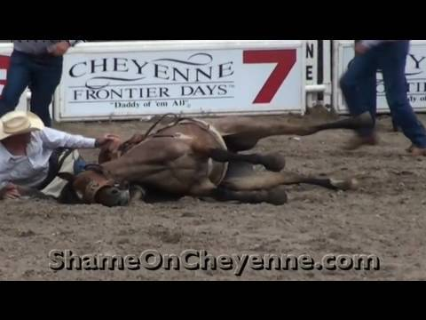 Horse Killed at Cheyenne Rodeo (Graphic)