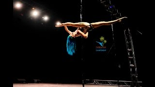 Florida Pole Fitness Championship 2016 - Leah Franklin