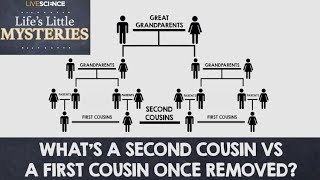 What's a Second Cousin vs. a First Cousin Once-Removed?
