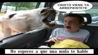1 HORA DE ALABANZAS CRISTIANAS VIEJITAS PERO BONITAS   MUSICA DE ADORACION