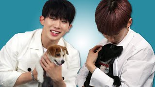 Monsta X Plays With Puppies While Answering Fan Questions