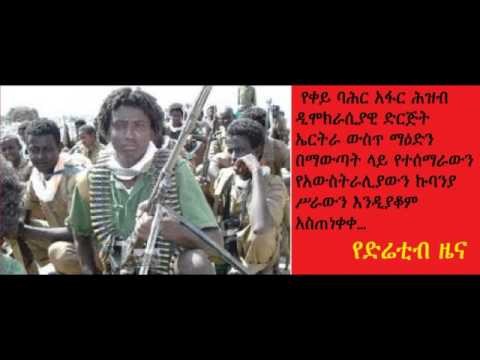 DireTube News - RSADO asked South Boulder to stop mining in Eritrea
