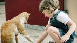 Дети и животные 4 ● Приколы с животными осень 2014 ● Dogs, Cats & Cute Babies Compilation ● Part 4