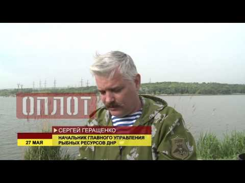 Зарыбление водоемов ДНР