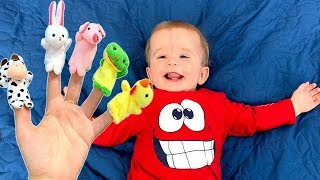 FINGER FAMILY SONG for baby\ Finger Animal song Nursery Rhymes JoyJoy  Lika