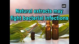 Natural extracts may fight bacterial infections - ANI News