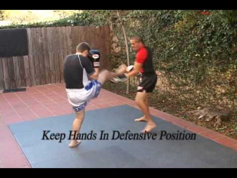 Fight Physics Muay Thai Drills 1 Image 1