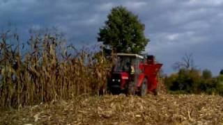 IMT 549 and SIP tornado 35 picking corn