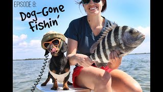 Episode 8 (Finale): Dog-Gone Fishin'
