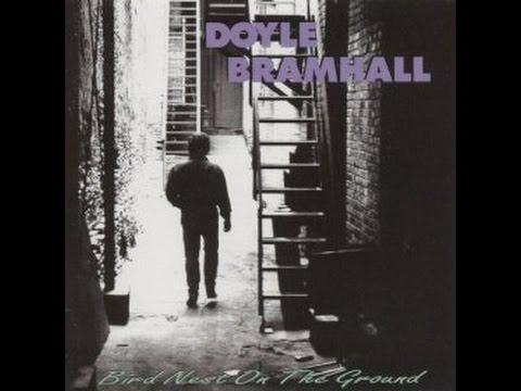 Doyle Bramhall  -   Birdnest On The Ground video