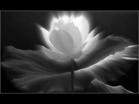 Niệm Nam Mô A Di Đà Phật (Chanting) nhạc rất hay