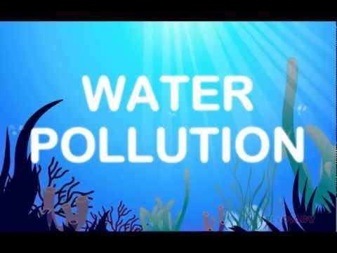 Animated Lesson To Learn About Water Pollution At Www.turtlediary video