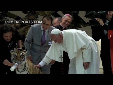 The Pope pets a tiger and has a scary experience