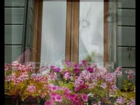 Lulet Në Dritare - Endri & Stefi Prifti video