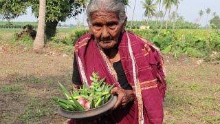 My 105 Years Grandma's Yummy Tasty Lady's Finger Recipe   Bendakaya Pulusu    Country Foods