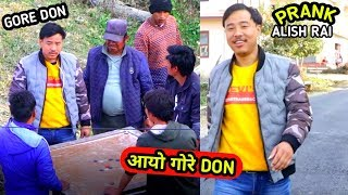 nepali prank - gore don/गोरे Don || comedy lfunny prank || alish rai new prank ||