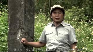 [行動解說員]太魯閣國家公園-錐麓古道