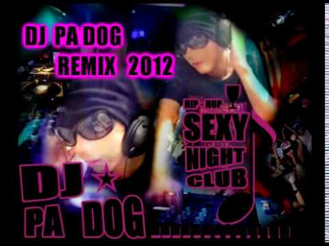 DJ PA DOG 2012 Remix 30 