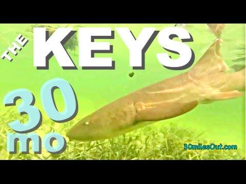 30milesOut.com~ FLORIDA SERIES #4 THE KEYS kayak fishing