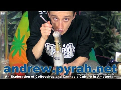 LEMON CRYSTAL BHO SHATTER The Green House Coffeeshop Amsterdam Weed Review 2014