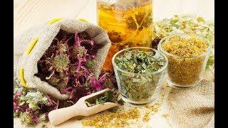 Cum vrea UE să ne interzică plantele medicinale